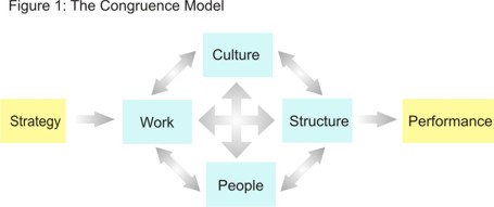 Congruence Model Diagram