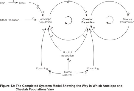 Systems Model Example