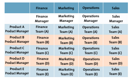 Example Matrix Organization Structure