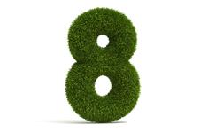 8D Problem-Solving Process