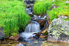 A gentle stream with grassy banks.