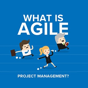 Agile Project Management Infographic