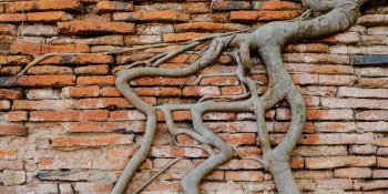 5 Whys - Getting to the Root of a Problem Quickly
