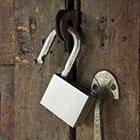 Unlock Organization's Potential